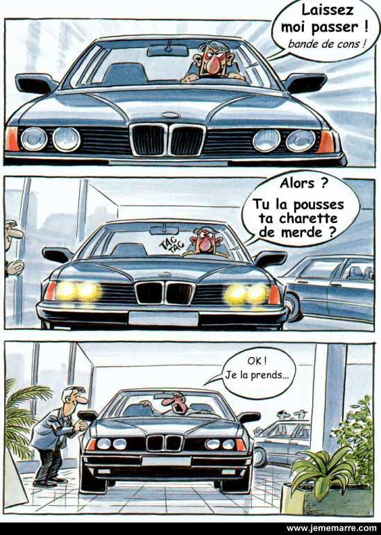 fou_du_volant.jpg